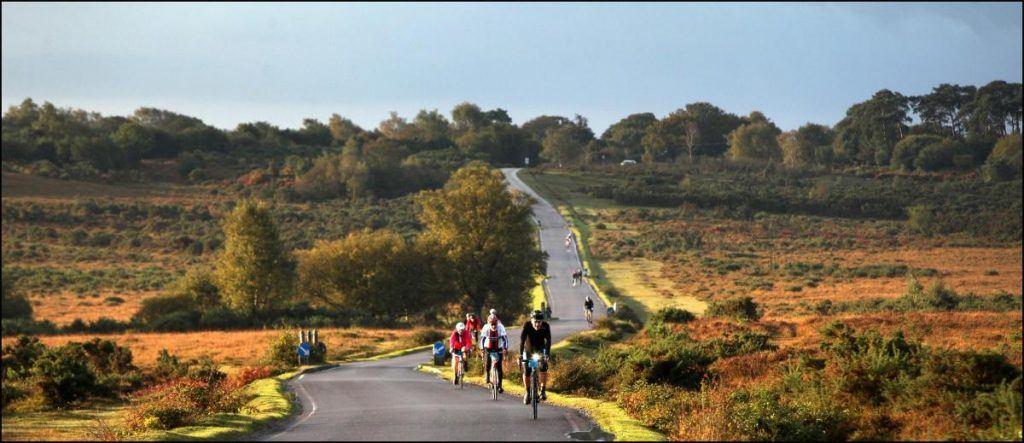 Cycling New Forest